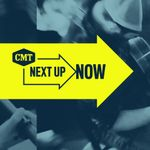 CMT Next Up Now, Volume 4