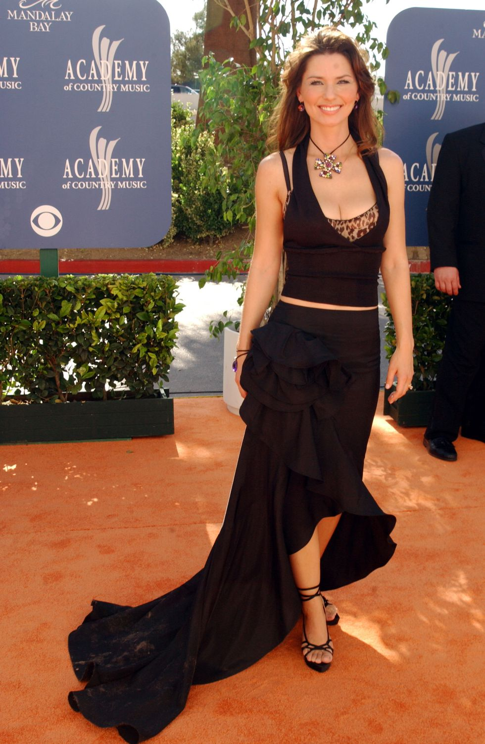 Shania Twain during 38th Annual Academy of Country Music Awards - Arrivals at Mandalay Bay Events Center in Las Vegas, Nevada, United States. (Photo by Bill Davila/FilmMagic)
